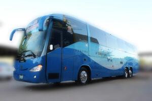 Междугородний пассажирский автобус дальнего следования на 50 мест и микроавтобусы на 18 мест.